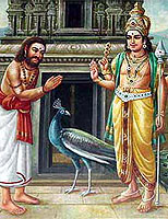 Murugan Bhakti feature articles